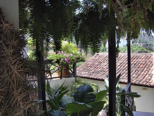 Ferienwohnung Apartment 4 (122844), Icod de los Vinos, Teneriffa, Kanarische Inseln, Spanien, Bild 20