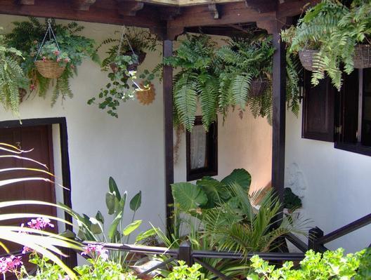 Ferienwohnung Apartment 4 (122844), Icod de los Vinos, Teneriffa, Kanarische Inseln, Spanien, Bild 21