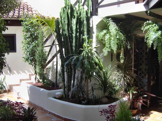 Ferienwohnung Apartment 1 (122852), Icod de los Vinos, Teneriffa, Kanarische Inseln, Spanien, Bild 21