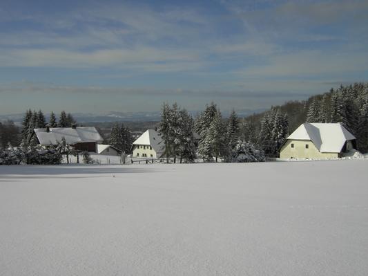 Ferienhaus Alpenblick (125723), Rickenbach, Schwarzwald, Baden-Württemberg, Deutschland, Bild 12