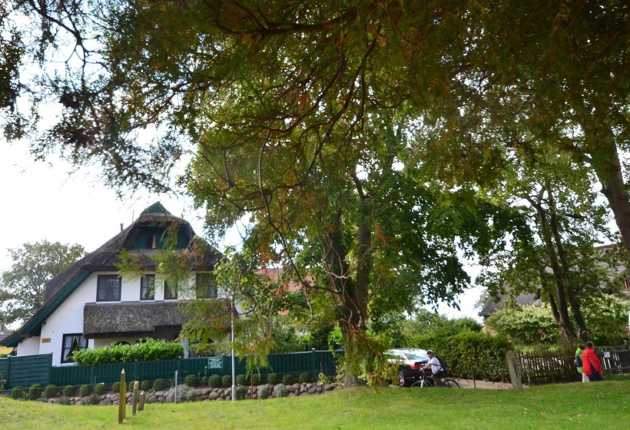 Ferienhaus Haus Moosbeere (127673), Groß Zicker, Rügen, Mecklenburg-Vorpommern, Deutschland, Bild 28