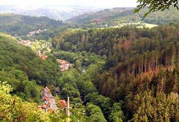 Ferienwohnung Pension u. Nichtraucher -FeWo*** Harz Residenz (129109), Thale, Harz (Sachsen-Anhalt), Sachsen-Anhalt, Deutschland, Bild 9