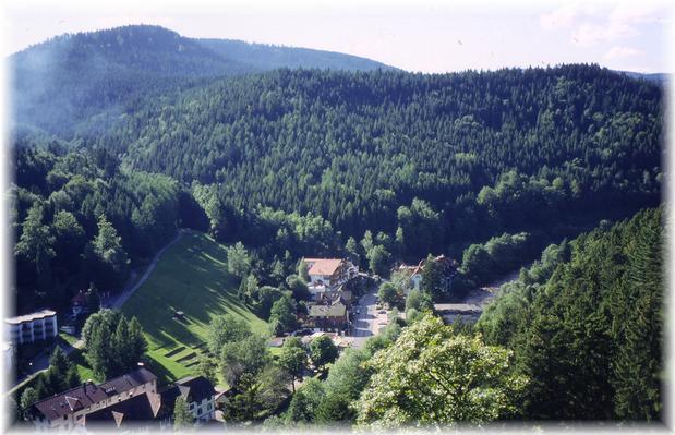 Ferienwohnung Fichtennest (136321), Baiersbronn, Schwarzwald, Baden-Württemberg, Deutschland, Bild 17