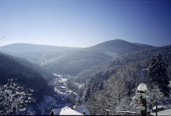 Ferienwohnung Fichtennest (136321), Baiersbronn, Schwarzwald, Baden-Württemberg, Deutschland, Bild 22