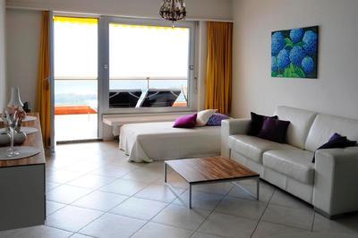 Holiday apartment Casa Panoramica Apt. 5 (1413469), Orselina, Lake Maggiore (CH), Ticino, Switzerland, picture 8