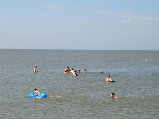 Schwimmen in der Nordsee