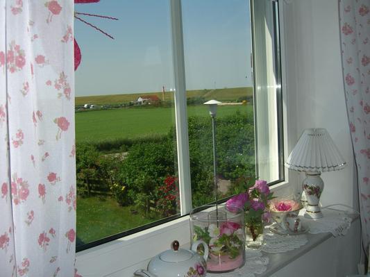 Blick aus dem Esszimmerfenster
