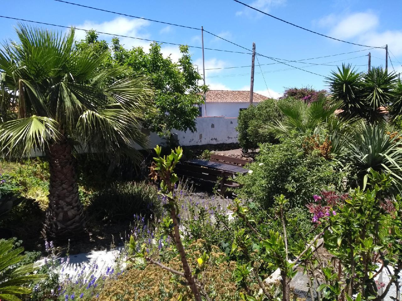 Ferienhaus Finca Primavera (144700), El Paso, La Palma, Kanarische Inseln, Spanien, Bild 22