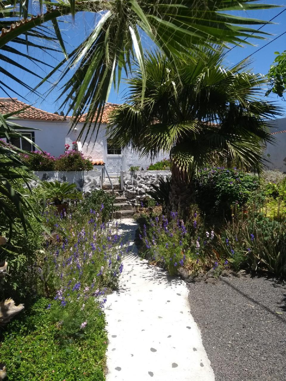 Ferienhaus Finca Primavera (144701), El Paso, La Palma, Kanarische Inseln, Spanien, Bild 25