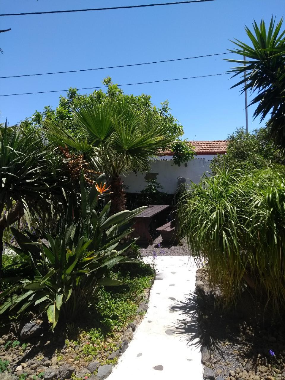 Ferienhaus Finca Primavera (144701), El Paso, La Palma, Kanarische Inseln, Spanien, Bild 28