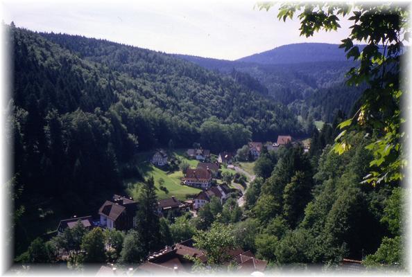 Ferienwohnung Gartenlust (144915), Baiersbronn, Schwarzwald, Baden-Württemberg, Deutschland, Bild 13
