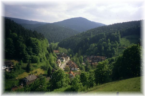 Ferienwohnung Gartenlust (144915), Baiersbronn, Schwarzwald, Baden-Württemberg, Deutschland, Bild 17