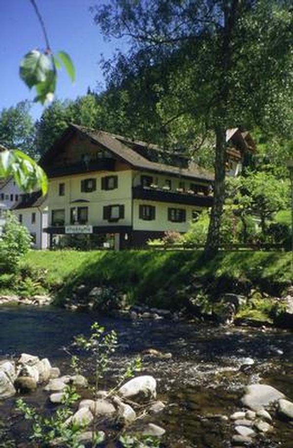 Ferienwohnung Bachweise (146348), Baiersbronn, Schwarzwald, Baden-Württemberg, Deutschland, Bild 1