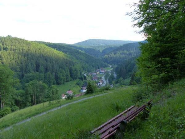 Ferienwohnung Bachweise (146348), Baiersbronn, Schwarzwald, Baden-Württemberg, Deutschland, Bild 17