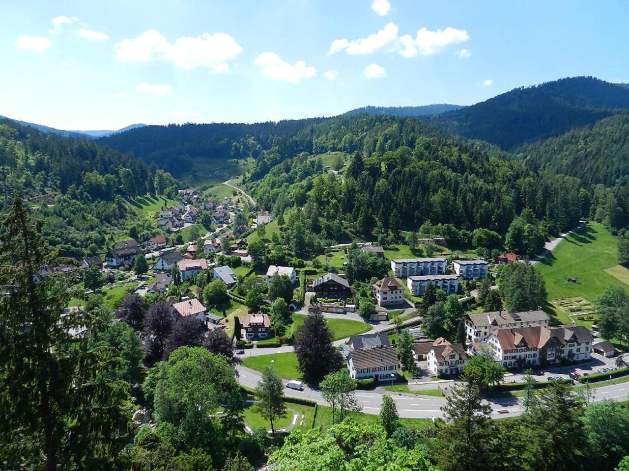 Ferienwohnung Morgensonne im Schwarzwald (146349), Baiersbronn, Schwarzwald, Baden-Württemberg, Deutschland, Bild 11
