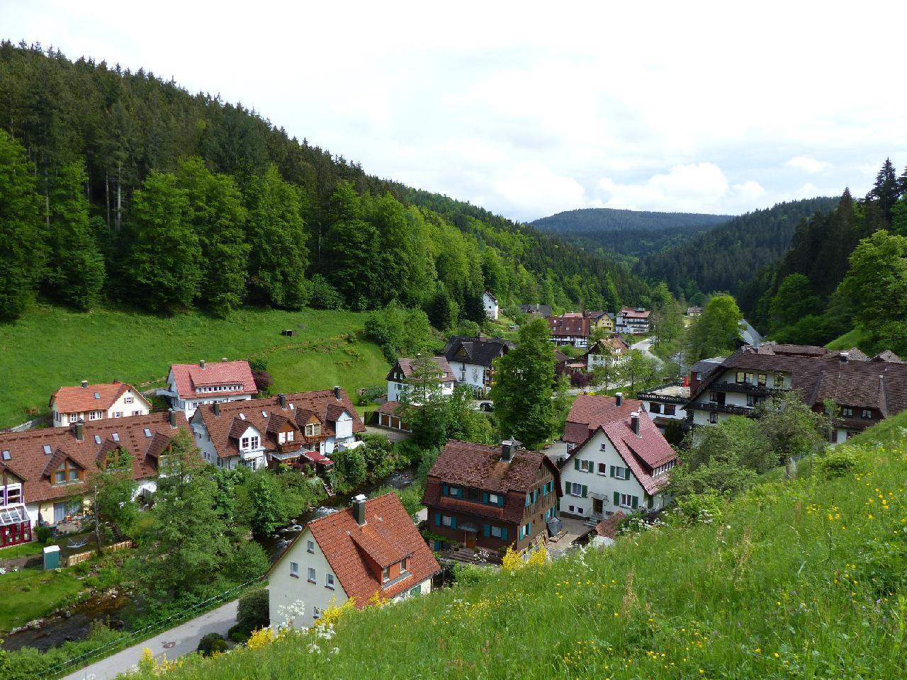 Ferienwohnung Morgensonne im Schwarzwald (146349), Baiersbronn, Schwarzwald, Baden-Württemberg, Deutschland, Bild 22