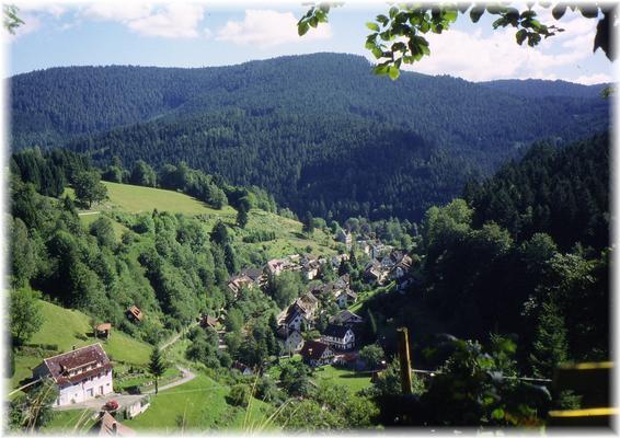 Ferienwohnung Morgensonne im Schwarzwald (146349), Baiersbronn, Schwarzwald, Baden-Württemberg, Deutschland, Bild 19