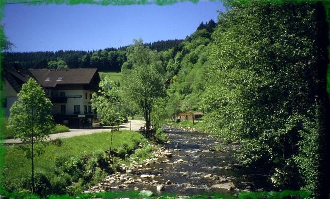 Ferienwohnung Morgensonne im Schwarzwald (146349), Baiersbronn, Schwarzwald, Baden-Württemberg, Deutschland, Bild 10