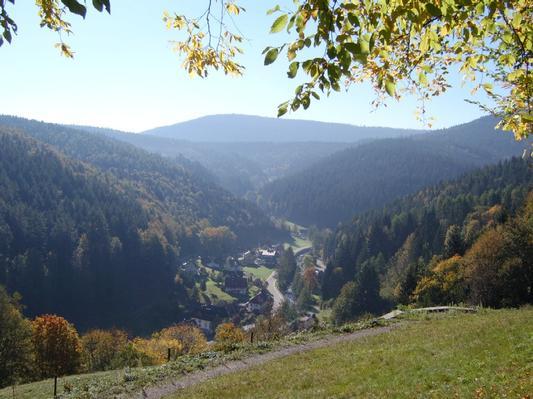 Ferienwohnung Morgensonne im Schwarzwald (146349), Baiersbronn, Schwarzwald, Baden-Württemberg, Deutschland, Bild 16