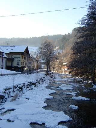 Ferienwohnung Morgensonne im Schwarzwald (146349), Baiersbronn, Schwarzwald, Baden-Württemberg, Deutschland, Bild 25