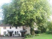 Mühle&Co - ein Cottage in einer ehemalige Ferienwohnung