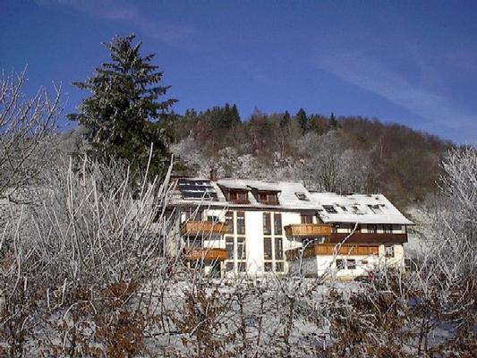 Ferienwohnung Alpenblick 2 im Südschwarzwald (153204), Zell im Wiesental, Schwarzwald, Baden-Württemberg, Deutschland, Bild 3
