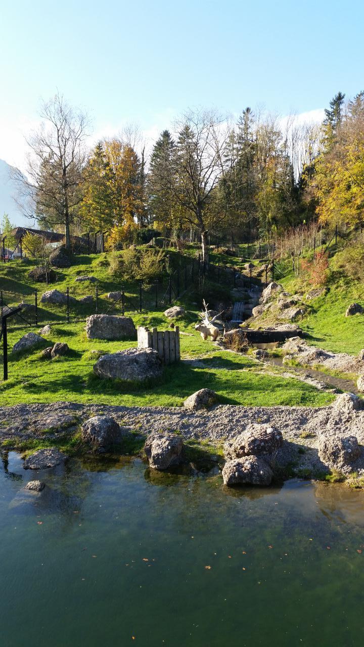 Ferienwohnung 3,5-Zimmer Ferienwohnung (1576388), Sattel, Schwyz, Zentralschweiz, Schweiz, Bild 24