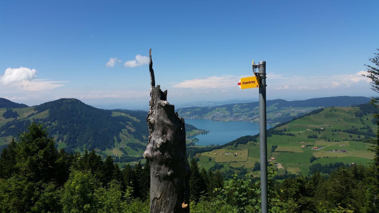 Ferienwohnung 3,5-Zimmer Ferienwohnung (1576388), Sattel, Schwyz, Zentralschweiz, Schweiz, Bild 27