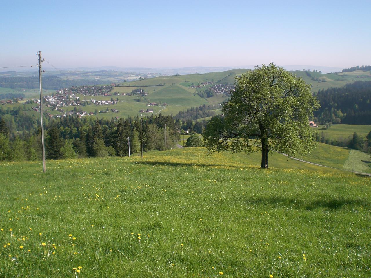 Ferienwohnung Brudersrüti (1586106), Schwarzenberg LU, Luzern, Zentralschweiz, Schweiz, Bild 12