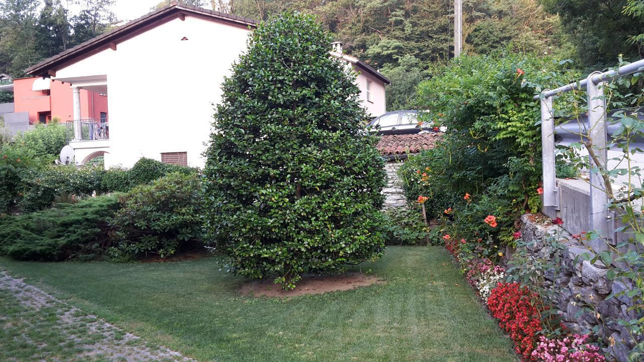 Holiday apartment Al Colombajo (1604592), Golino, Lake Maggiore (CH), Ticino, Switzerland, picture 16