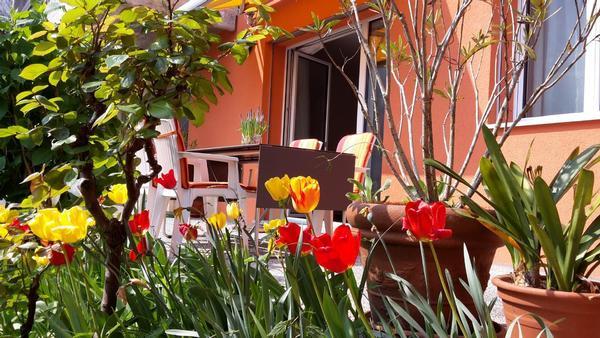 Holiday apartment Al Colombajo (1604592), Golino, Lake Maggiore (CH), Ticino, Switzerland, picture 13