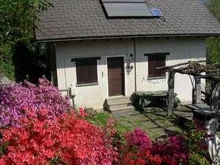Ferienhaus Casa Campo di Mezzo (161924), Bellinzona, Bellinzona, Tessin, Schweiz, Bild 13