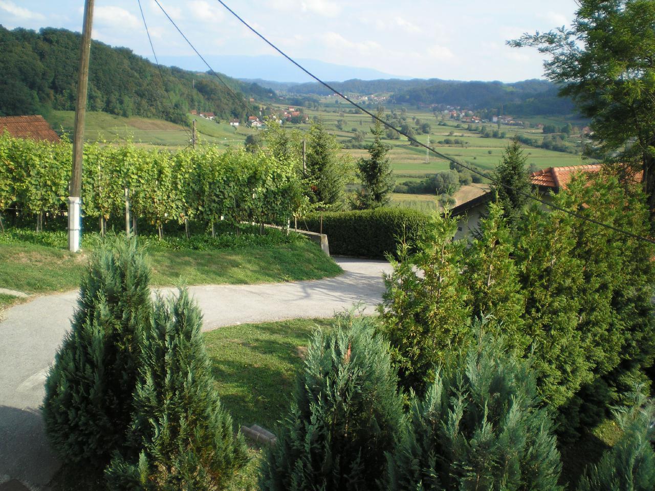 Ferienhaus Apartmennts Country House Stipica Tuheljske Spa (1628635), Tuheljske Toplice, , Mittelkroatien, Kroatien, Bild 17