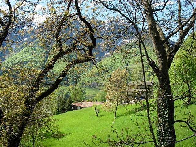 Holiday house Rustico al Bosco (1641233), Cadanza, Lake Maggiore (CH), Ticino, Switzerland, picture 2