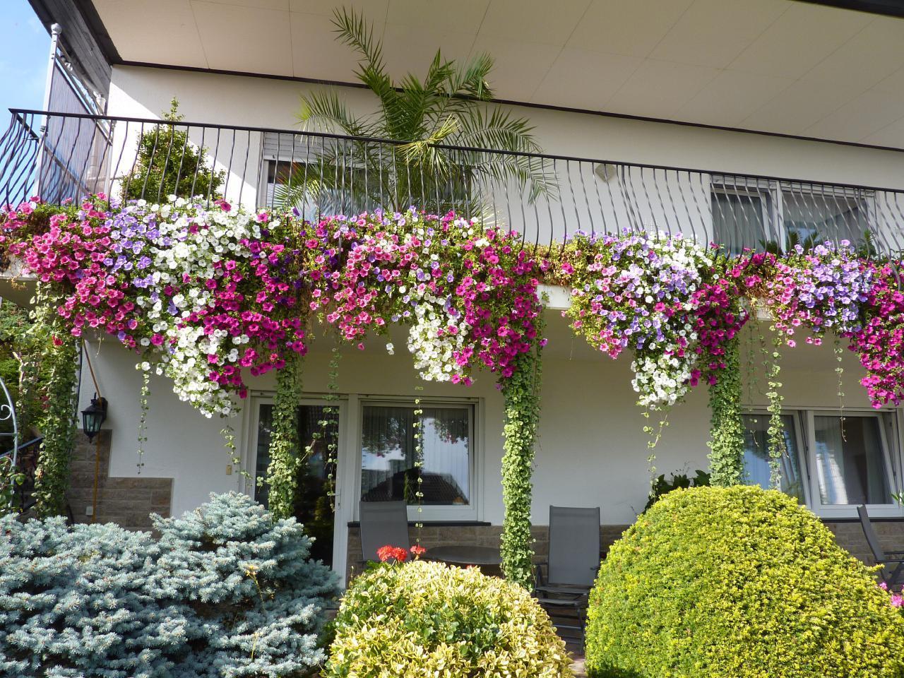 Ferienwohnung Haus Alexandra Fewo1 **** DTV (166446), Schöneberg, Hunsrück, Rheinland-Pfalz, Deutschland, Bild 2