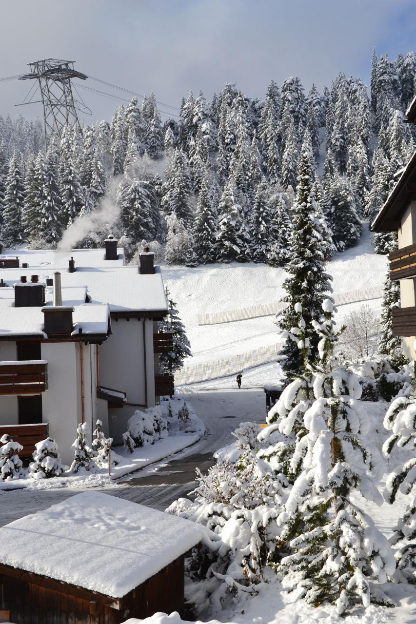 Ferienwohnung Ski ab Haustür, Laax-Murschetg (1665530), Laax, Flims - Laax - Falera, Graubünden, Schweiz, Bild 8