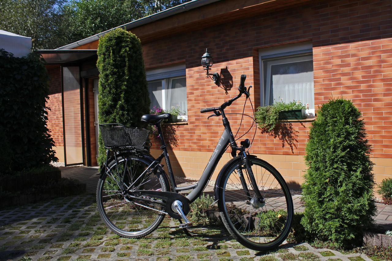 Ferienhaus Spreewaldhäuser am See - Alt-Schadow (1677004), Märkische Heide, Spreewald, Brandenburg, Deutschland, Bild 13