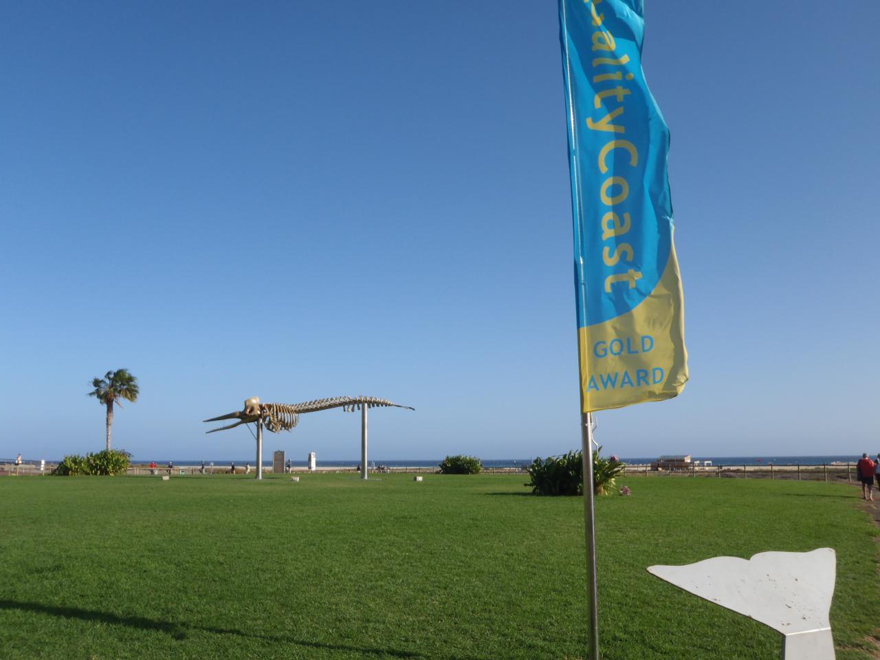 Ferienwohnung Sonnenterrassen Morro Jable (1685410), Morro Jable, Fuerteventura, Kanarische Inseln, Spanien, Bild 21