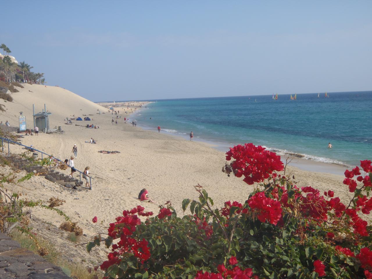 Ferienwohnung Sonnenterrassen Morro Jable (1685410), Morro Jable, Fuerteventura, Kanarische Inseln, Spanien, Bild 18