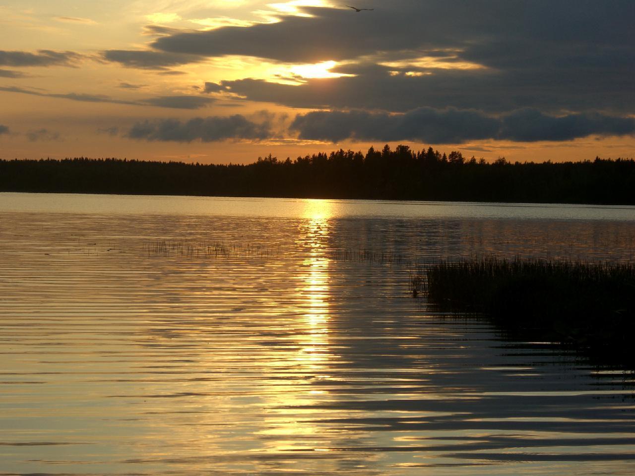 Ferienhaus - Mökki mit Sauna direkt am See  in Mouhijärvi-Sastamala (1707905), Mouhijärvi, , Westfinnland, Finnland, Bild 14