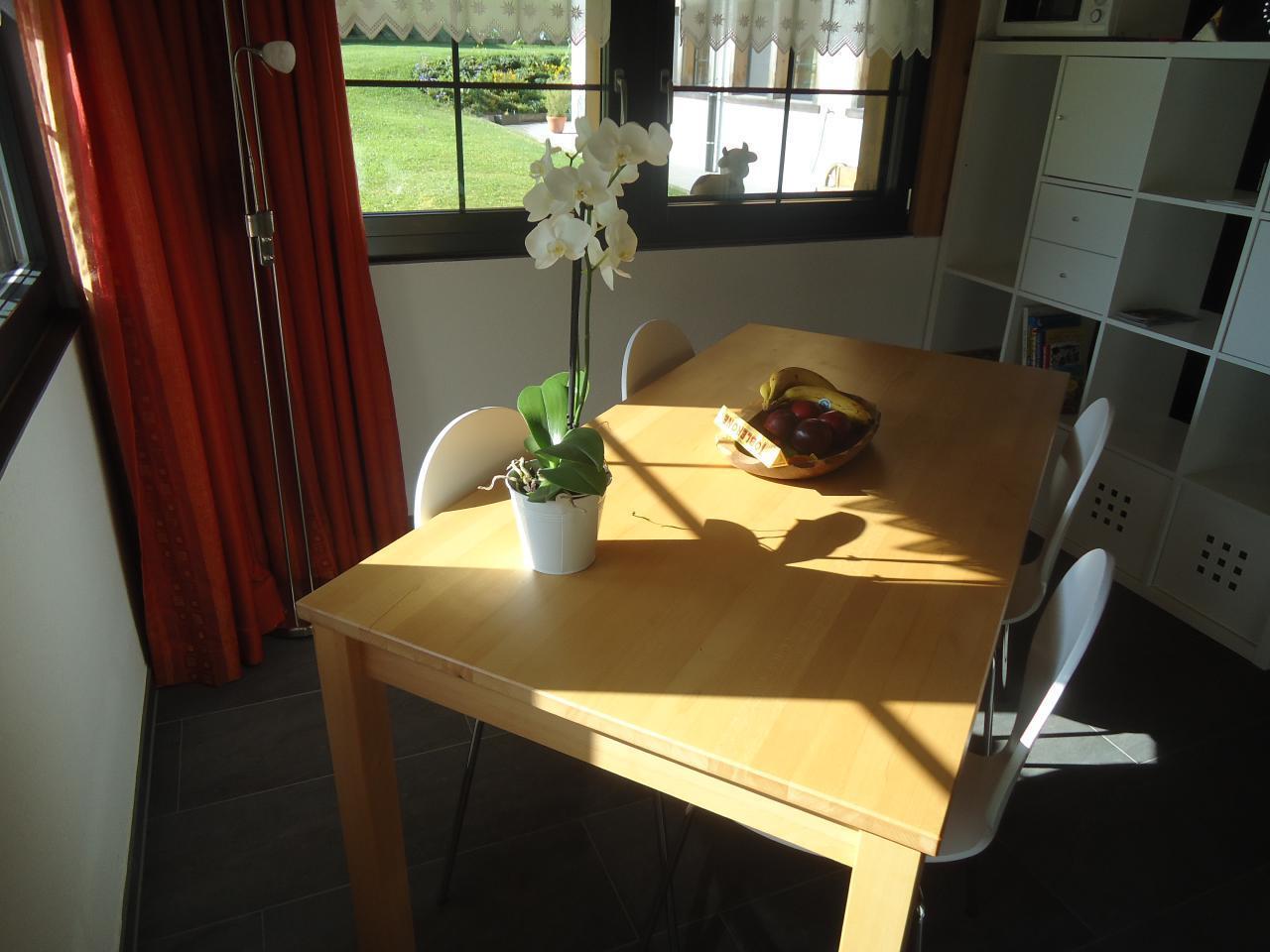 Ferienwohnung Ruhiges Apartment in der Natur (1707952), Oey, Diemtigtal, Berner Oberland, Schweiz, Bild 10