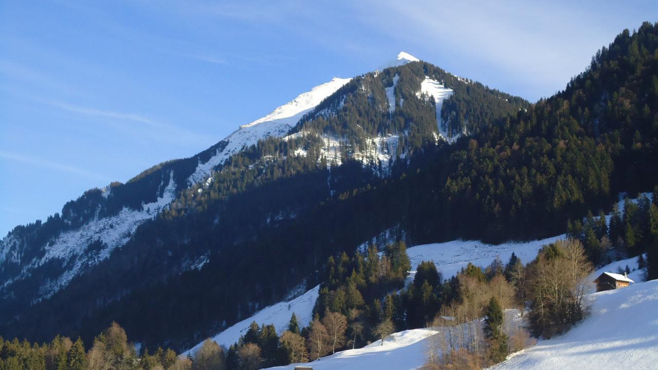 Ferienwohnung Ruhiges Apartment in der Natur (1707952), Oey, Diemtigtal, Berner Oberland, Schweiz, Bild 31