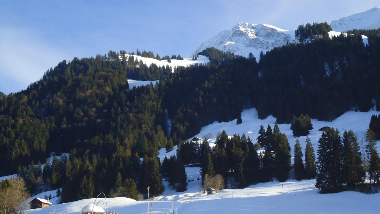 Ferienwohnung Ruhiges Apartment in der Natur (1707952), Oey, Diemtigtal, Berner Oberland, Schweiz, Bild 30
