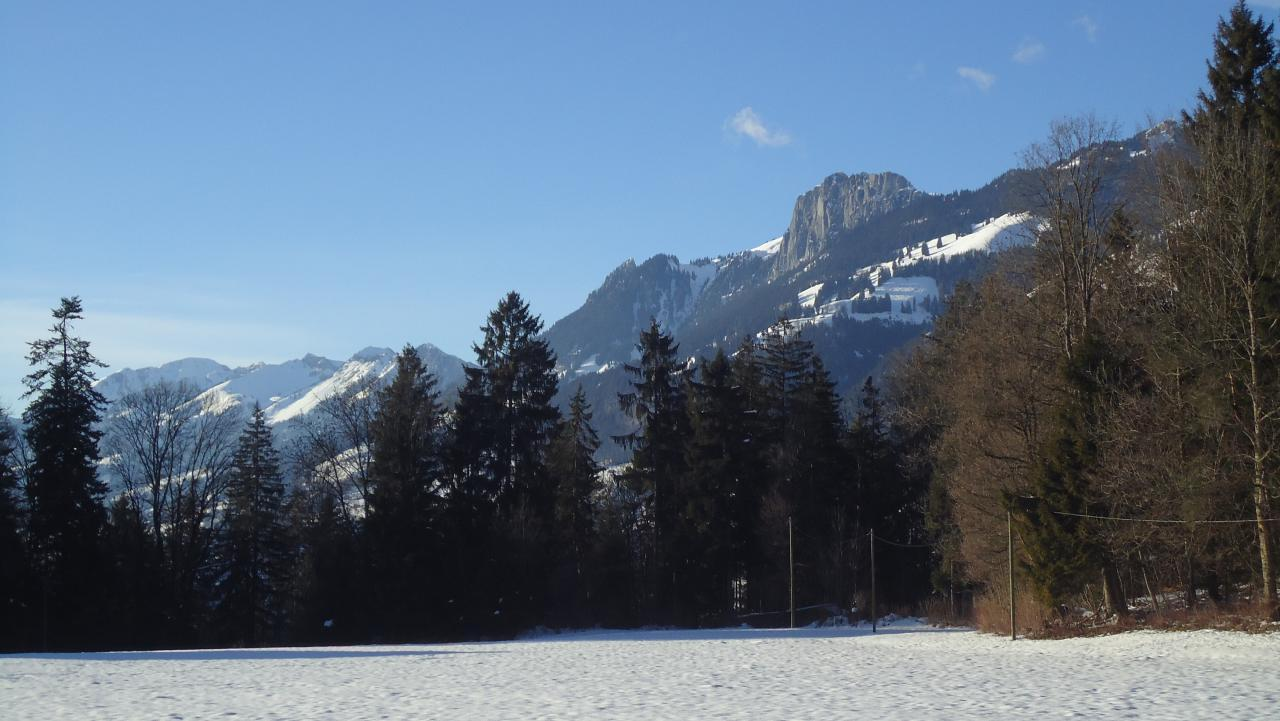 Ferienwohnung Ruhiges Apartment in der Natur (1707952), Oey, Diemtigtal, Berner Oberland, Schweiz, Bild 29