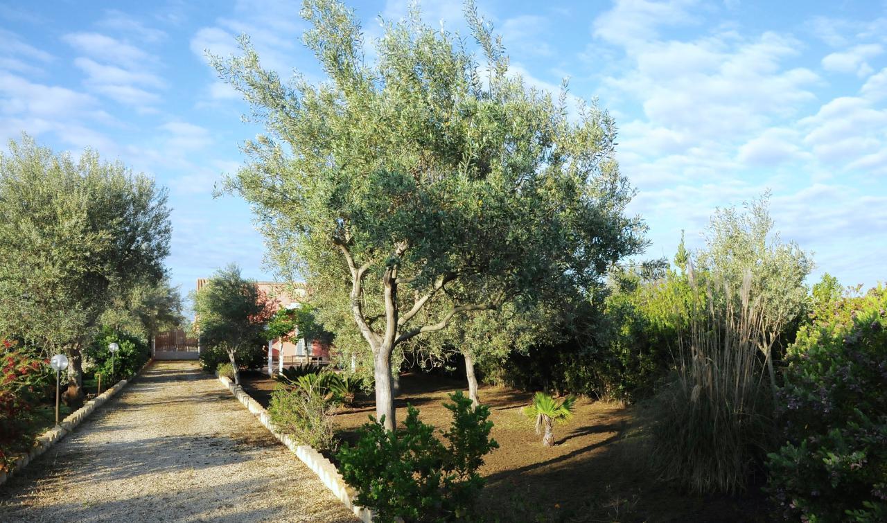 Maison de vacances CASA CALVO | BIRRI SUL MARE | Villa di campagna al mare (1712787), Noto, Siracusa, Sicile, Italie, image 33