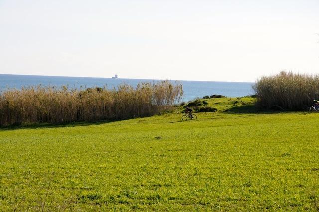 Maison de vacances CASA CALVO | BIRRI SUL MARE | Villa di campagna al mare (1712787), Noto, Siracusa, Sicile, Italie, image 37