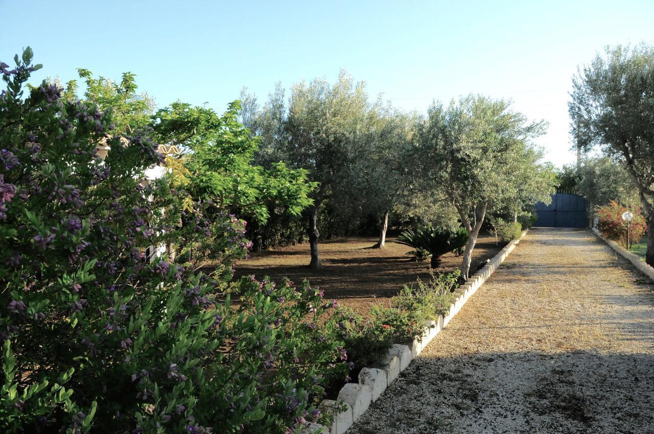 Maison de vacances CASA CALVO | BIRRI SUL MARE | Villa di campagna al mare (1712787), Noto, Siracusa, Sicile, Italie, image 35