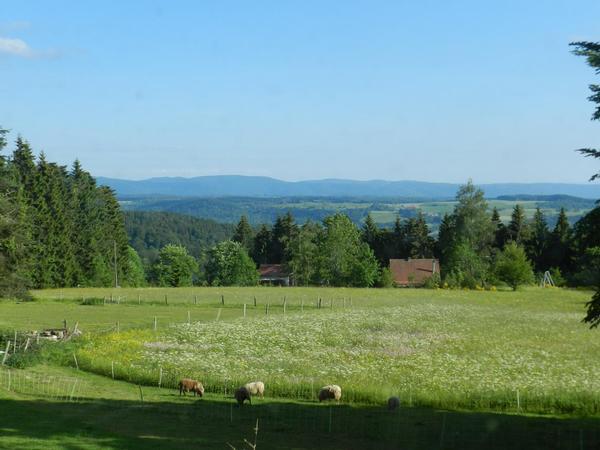 Ferienhaus Bergbauernhäuschen Shila, im Naturparc der Vogesen,  mit Saunahaus (1717460), La Rosière, Haute-Saône, Franche-Comté, Frankreich, Bild 4