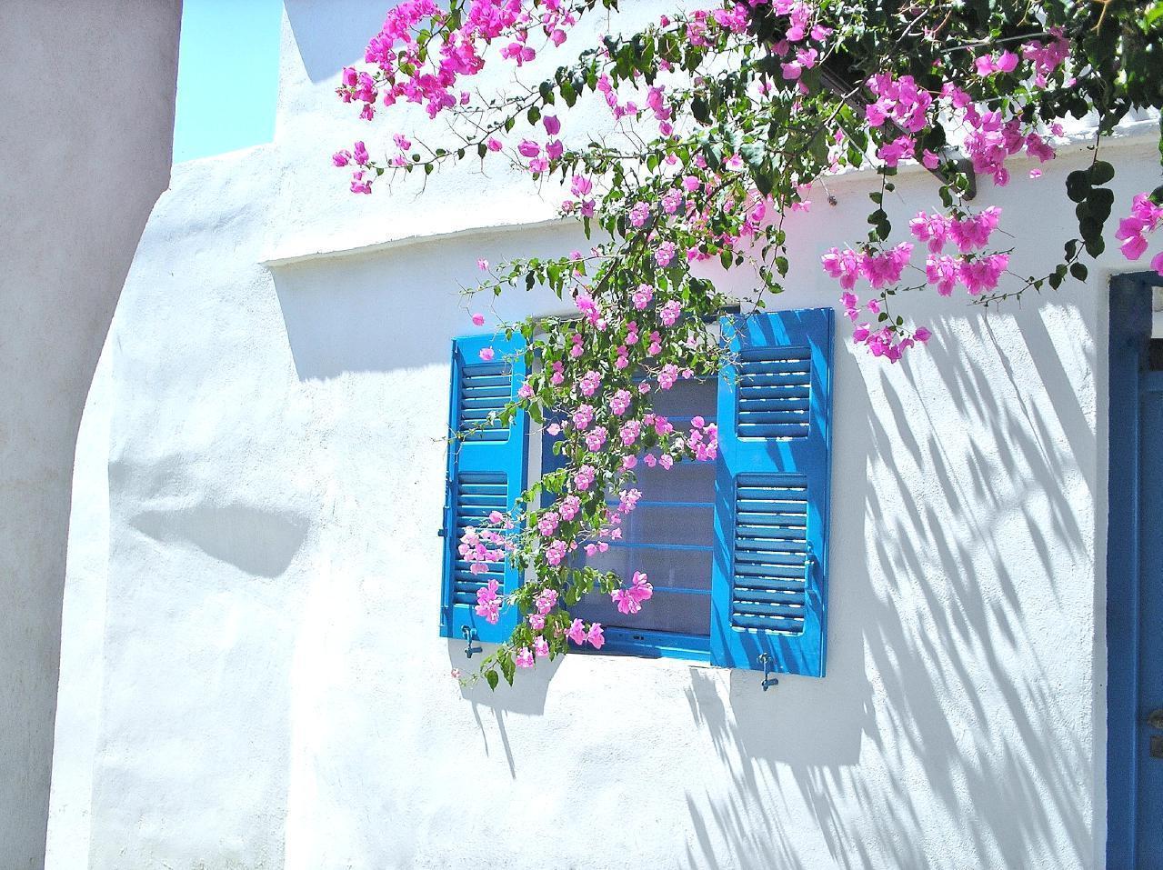 Ferienwohnung Purple Flower Villa - Suite (1740751), Siphnos, Sifnos, Kykladen, Griechenland, Bild 1