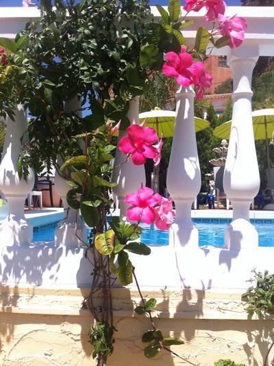 Ferienhaus VILLA LAS CHICAS - Moderne familienfreundliche Villa mit fantastischen Meerblick, großer P (178466), Fuengirola, Costa del Sol, Andalusien, Spanien, Bild 10